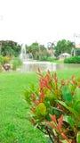 Schöne rote Anlage mit großem Rasen im Garten Lizenzfreies Stockbild