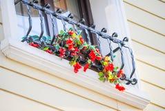 Schöne rote Blumen Stockbild