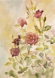 Schöne rote Rosen im Garten gemalt im Aquarell Lizenzfreies Stockfoto