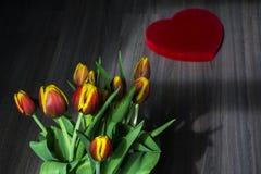 Schöne rote und gelbe Tulpen mit großem rotem Herzen Stockbilder