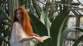 Schöne Rothaarige mit dem flüssigen Haar in einem weißen Kleid unter der Aloe stock video