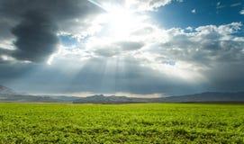Schöne ruhige Landschaft lizenzfreie stockfotos