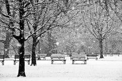 Schöne, ruhige Szene eines Parks während eines Winters lizenzfreies stockbild