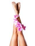 Schöne schlanke weibliche Beine mit Blume Stockfotos