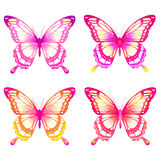 Schöne Schmetterlinge Stockbild