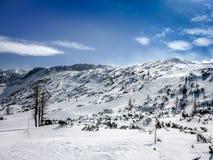 Schöne Schnee-mit einer Kappe bedeckte alpine Berge an einem sonnigen Tag Lizenzfreies Stockfoto