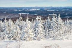 Schöne schneebedeckte Landschaft in Quebec, Kanada stockfoto