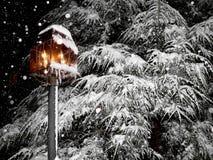 Schöne, schneebedeckte Winterszene lizenzfreie stockfotografie