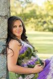 Schöne schwangere Frau Stockfoto