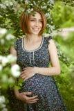 Schöne schwangere Frau im Garten Stockfoto