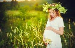 Schöne schwangere Frau im Kranz, der in der Sommernatur sich entspannt Lizenzfreies Stockfoto