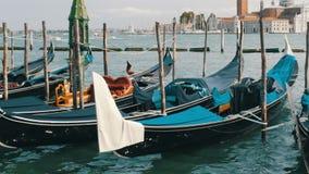 Schöne schwarze Gondeln stehen und schaukeln auf die Wellen von Grand Canal in Venedig stock footage