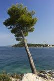 Schöne Seeansicht nahe einer Stadt Rovinj Lizenzfreie Stockfotografie