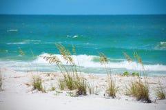 Schöne Seehafer entlang Aqua färbten Ozeanküstenlinie mit Wellen lizenzfreies stockfoto