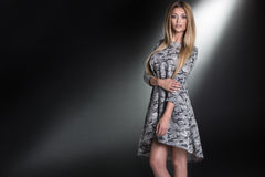 Schöne sexy blonde Dame Stockfoto