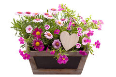 Schöne Sommerblumen und ein hölzernes Herz Lizenzfreie Stockfotos