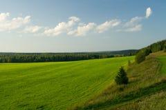 Schöne Sommerlandschaft. Lizenzfreies Stockbild