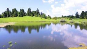 Schöne Sommerlandschaft mit See und Wald, welche die Kamera in einen Kreis sich bewegt stock video footage