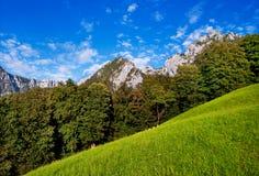 Schöne Sommernaturlandschaft im Bayern Lizenzfreies Stockfoto