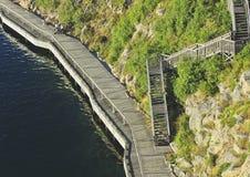 Schöne Sommersaisonbesonderephotographie Pier/Gehweg/Hafen/hölzerner Weg nah an dem Ozean Foto genommen von oben Grünes veg stockfotografie