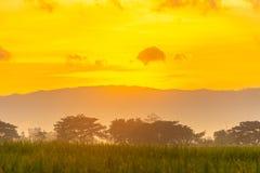 Schöne Sonnenaufgangansicht stockbild