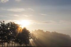 Schöne Sonnenstrahlen lizenzfreie stockfotografie