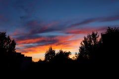Schöne Sonnenuntergang- und Baumschattenbilder Stockbild