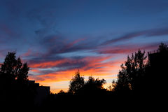 Schöne Sonnenuntergang- und Baumschattenbilder Stockbilder