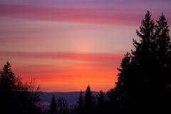 Schöne Sonnenunterganghimmel- und -baumschattenbilder Stockbild