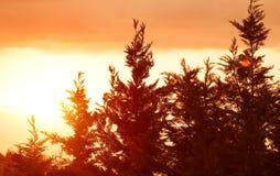 Schöne Sonnenunterganglandschaft lizenzfreie stockfotografie