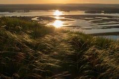 Schöne Sonnenunterganglandschaft mit wellenartig bewegendem Gras auf dem Hügel und dem See im Hintergrund Stockbild