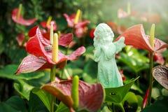 Schöne Spadixblume und -statue im Garten Stockfoto