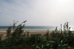 Schöne spanische Küstenlinie: Strand, Meer, Wellen mit weißem Kamm während des Sonnenuntergangs lizenzfreies stockfoto