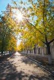 Schöne Stadtlandschaft mit Herbstbäumen stockbilder