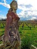 Schöne Statue eines Mädchens, das Trauben auf einem Hintergrund von Weinbergen und von blauem Himmel erfasst Stockbilder
