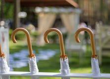 Schöne Stifte, Regenschirme Stockfoto