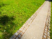 Schöne Straße in der Natur Stockbild