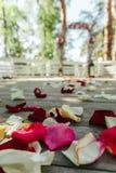 Schöne Straße mit dem rosafarbenen Blumenblatt für eine Hochzeit Lizenzfreie Stockbilder