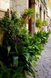 Schöne Straße verziert mit Grünpflanzen in den Töpfen, Valldemossa, Mallorca lizenzfreie stockbilder