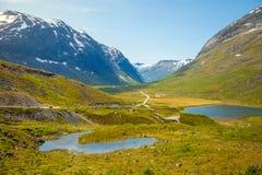 Schöne Straßenlandschaft von Norwegen-Landschaft, Skandinavien lizenzfreie stockbilder