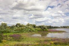 Schöne szenische Ansicht über den Bereich des Groenlanden und des Oude Waal im Ooijpolder nahe Nijmegen, die Niederlande stockbild