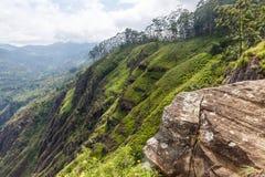 schöne szenische Ansicht von den felsigen Bergen bedeckt mit grünen Bäumen, Asien stockfoto
