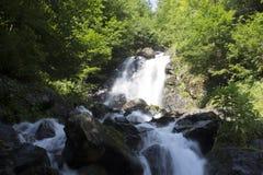 Schöne Tapete des Wasserfalls, strömen schnellen Milchfluß Felsiger Gebirgsfluss Abchasiens in der Waldwasserfallmolkerei Stockbild