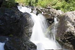 Schöne Tapete des Wasserfalls, strömen schnellen Milchfluß Felsiger Gebirgsfluss Abchasiens in der Waldwasserfallmolkerei Lizenzfreie Stockfotos