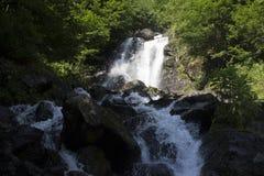 Schöne Tapete des Wasserfalls, strömen schnellen Milchfluß Felsiger Gebirgsfluss Abchasiens in der Waldwasserfallmolkerei Stockfotografie