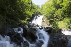 Schöne Tapete des Wasserfalls, strömen schnellen Milchfluß Felsiger Gebirgsfluss Abchasiens in der Waldwasserfallmolkerei Stockbilder