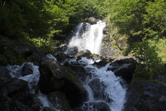 Schöne Tapete des Wasserfalls, strömen schnellen Milchfluß Felsiger Gebirgsfluss Abchasiens in der Waldwasserfallmolkerei Lizenzfreie Stockfotografie