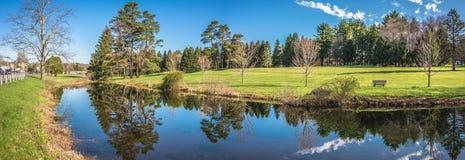 Schöne Teich-Reflexionen stockbild