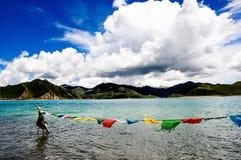 Schöne Tibet-Landschaft im Porzellan-YamdrokTso Stockbilder