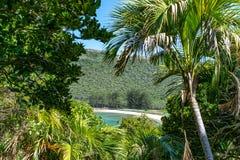 Schöne Tropeninselansicht des Nordbucht-Strandes auf Lord Howe Island, New South Wales, Australien, gesehener durch subtropischer lizenzfreies stockfoto